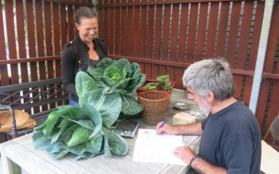 Heerlijke verse groenten van de Klokketoren!