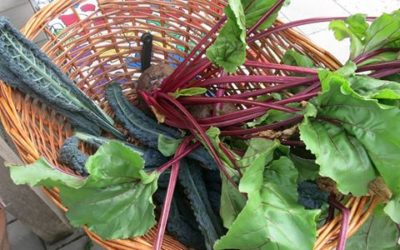 Heerlijke groente bij de Klokketoren