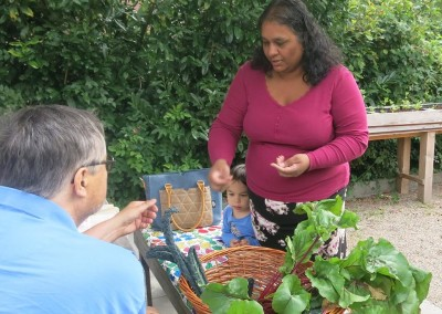 Biologische groente? Koop je in onze moestuin!