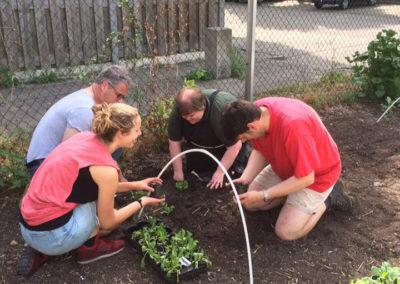 Vrijwilligers van de kinderboerderij helpen