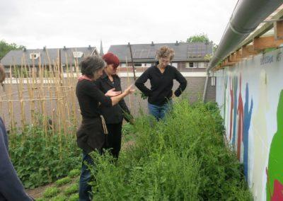Tuingroep de Haard inspecteert de tuin