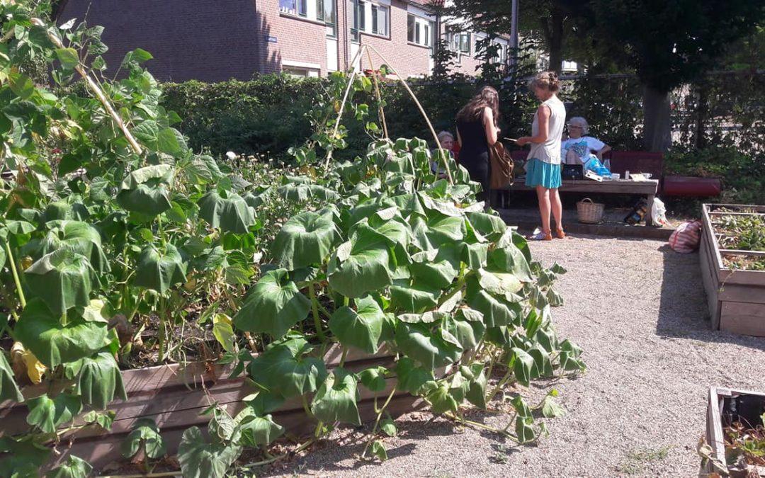 Tijd Voor Tuin : Het is winter tijd voor onderhoud van de tuin westerpost