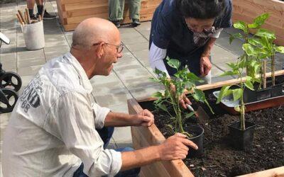 Samen met de mensen van Deel De Dag in stadstuin de Groene Schakel nieuwe bakkentuin in gebruik genomen